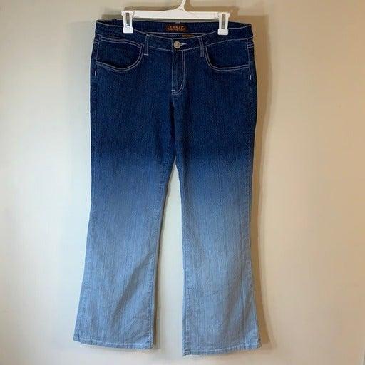 CREST Women's Ombré Jeans Size-13/14