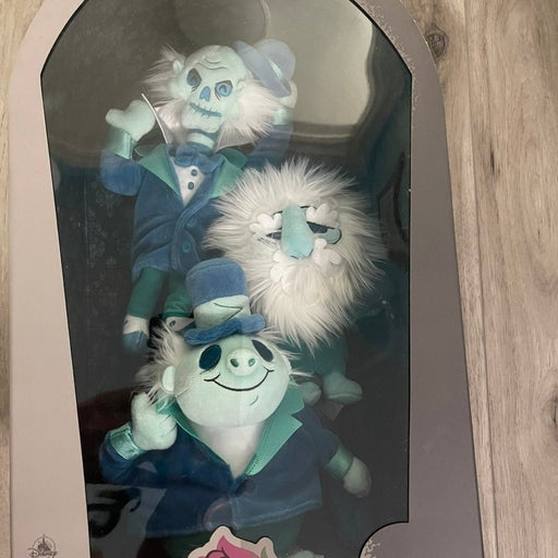 Haunted Mansion Disney Hitchhiking Ghost