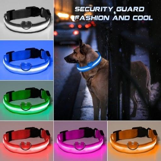 2 Pack LED Flashing Pet Collar Glowing Dog Collar For Safety Walking Pet