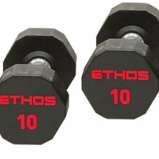 NEW ETHOS 10 lb Dumbbell Pair Weights
