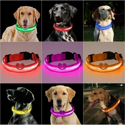 LED Flashing Pet Collar Glowing Dog Collar Safety Walking Pet USB Rechargeable
