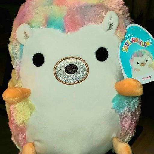 Bowie squishmallow hedgehog