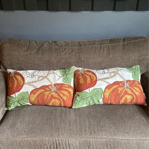 Pottery barn harvest pillows set of 2