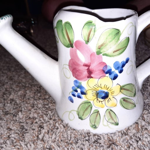 FTD ceramic watering can