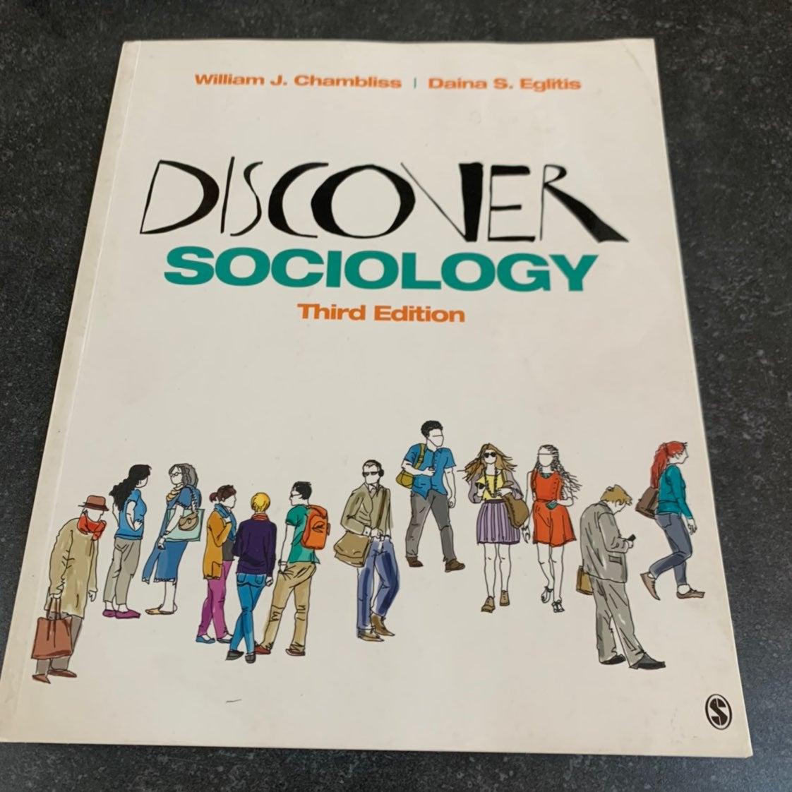 Discover Sociology 3rd edition