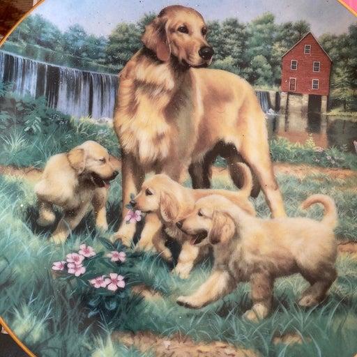 Collectors Golden Retriever Plate