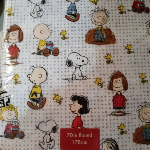 PeanutsSnoopy & Charlie Brown Tablecloth