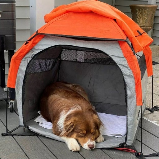 Petego pet tent