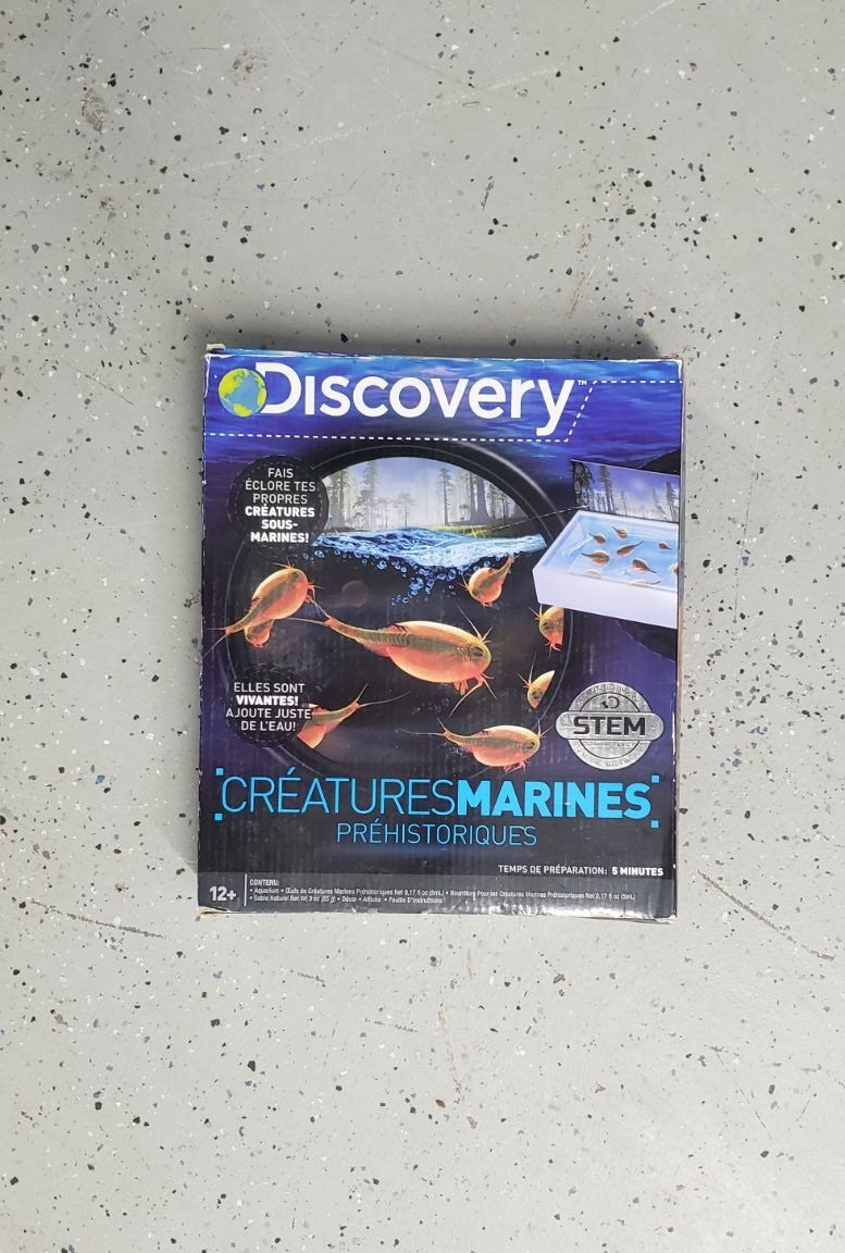 Discovery Marines Creatures
